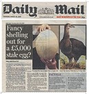 Daily Mail Egg Story