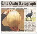 Daily Telegraph Egg Story